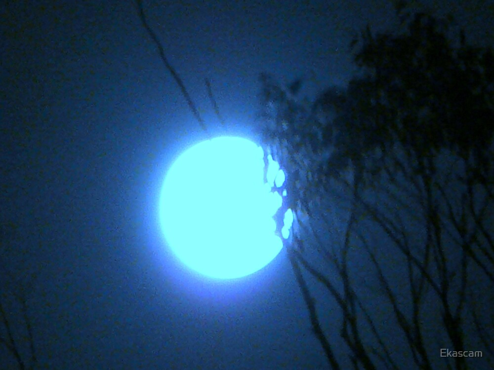 BLUE MOON by Ekascam