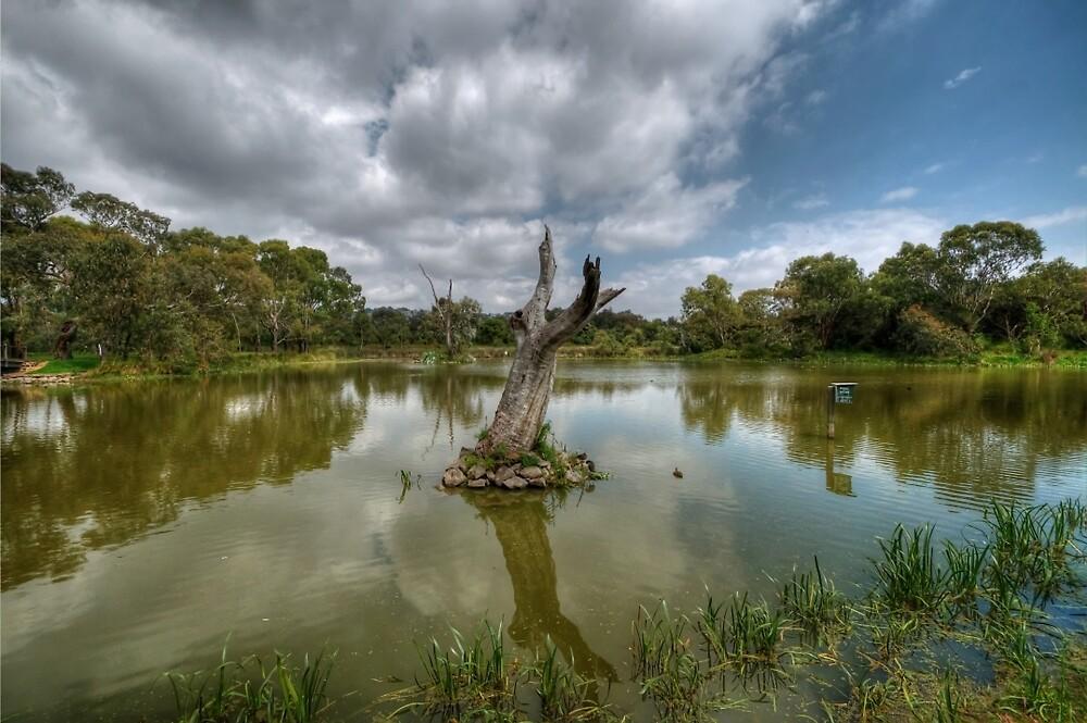 Balyang Sanctuary by Danielle  Miner