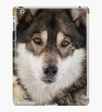 Wolf Gaze iPad Case/Skin
