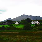 Houses in Donegal, Ireland by Shulie1