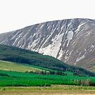 Mount Errigal, Donegal, Ireland by Shulie1