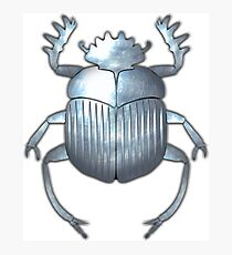 Scarab Beetle 4 - Silver Photographic Print