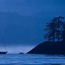 Blue Mist by toby snelgrove  IPA