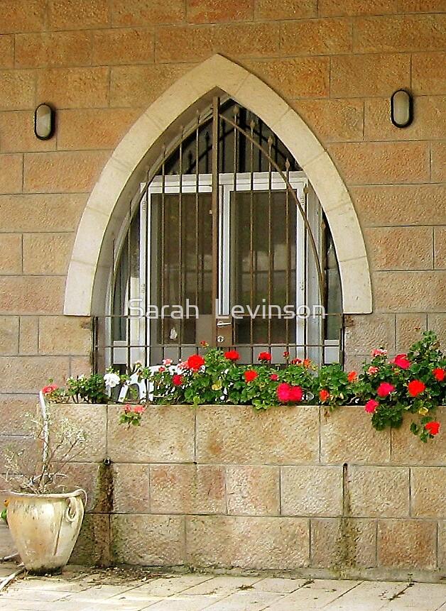 Jerusalem arched window by Sarah  Levinson