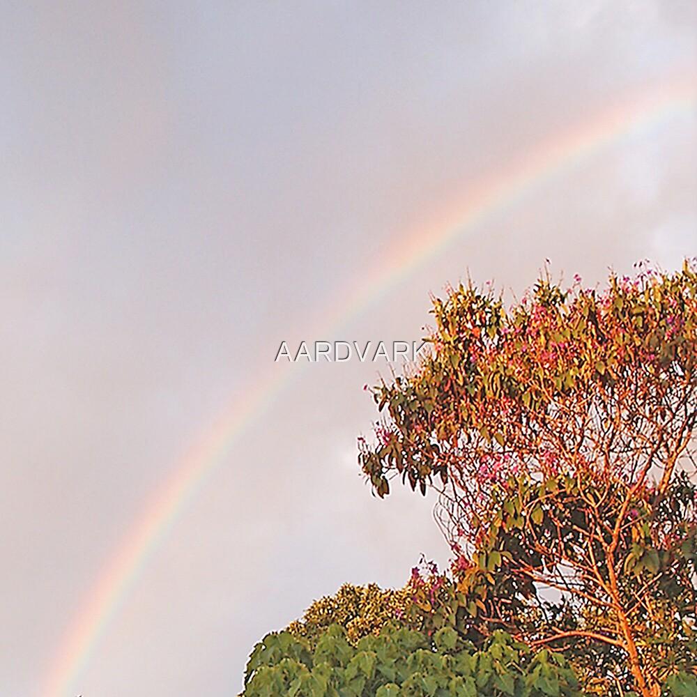 Mpumalanga Rainbow by AARDVARK
