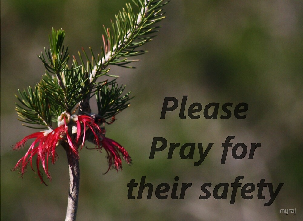 Please pray for their safety by myraj