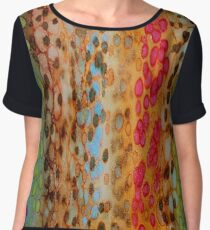 The Rainbow Leopard Chiffon Top