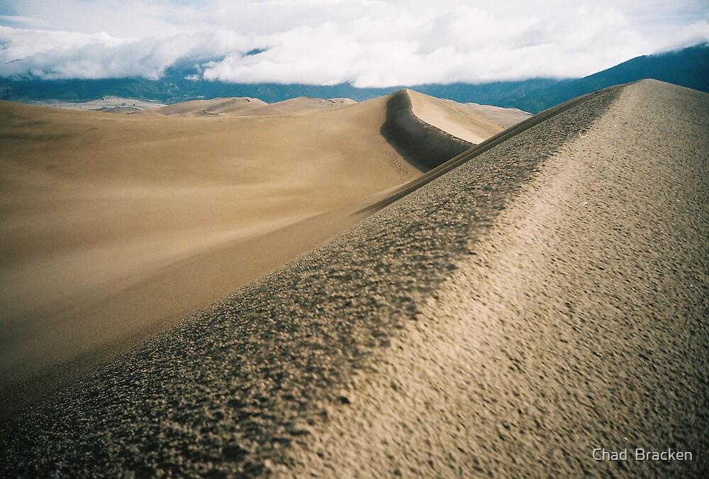The Dune by Chad  Bracken