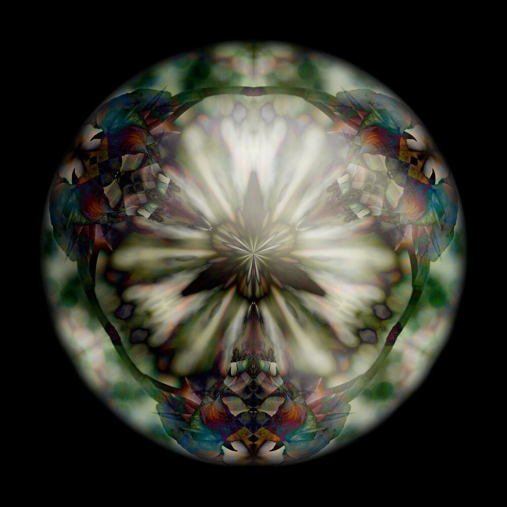 Hybrid Sphere Fan Flower B by Neil Montgomery