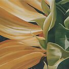 sunflower by cathy savels