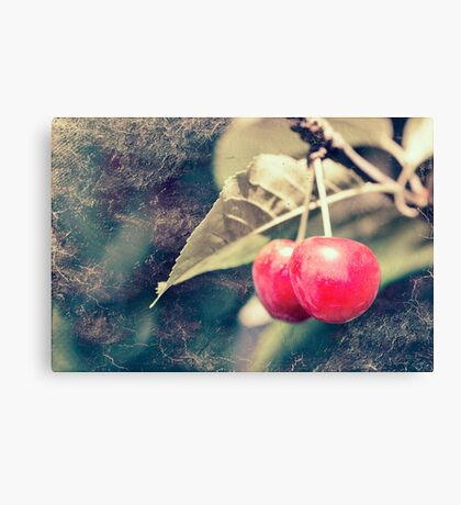 A pair of cherries Canvas Print