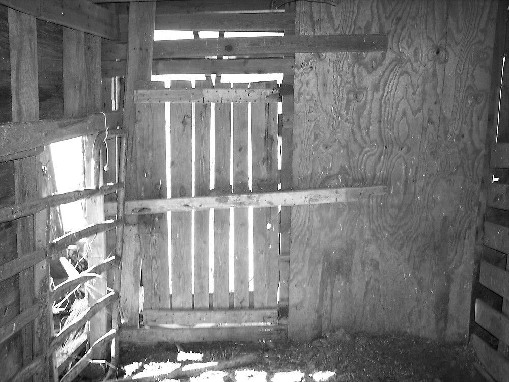 barn door by dannielle