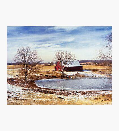 Martin Farm Photographic Print