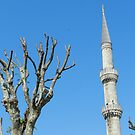 Istanbul Skyline by hans p olsen