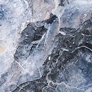 Grey Marble by 4ogo Design