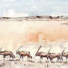 Gemsbuck in the Kalahari by Maree Clarkson