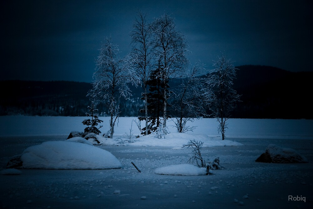 Lonely Trees by Robiq