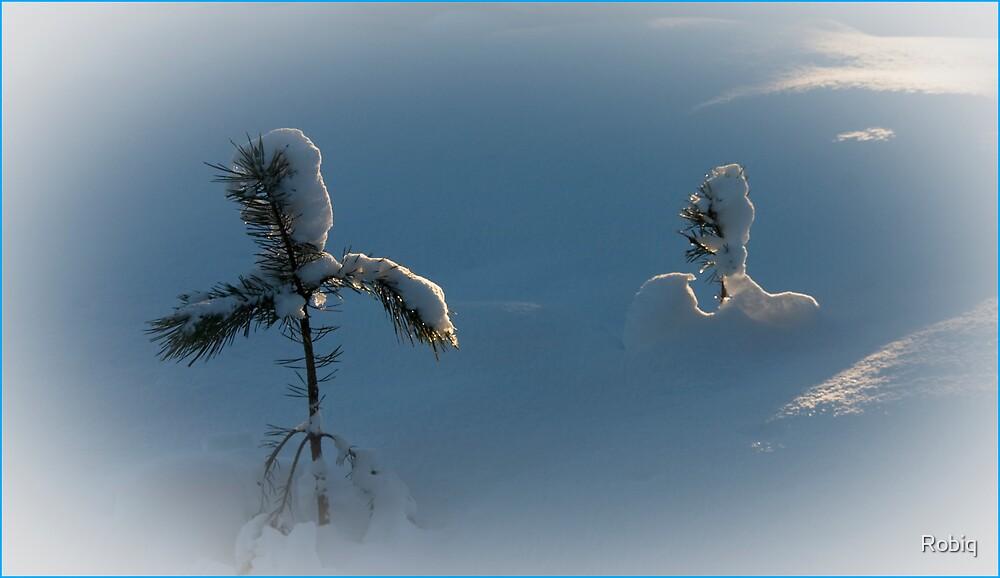 Blue Snow |  White Sight by Robiq