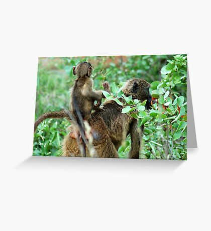 EASY FREE RIDES AT MY AGE ! Greeting Card