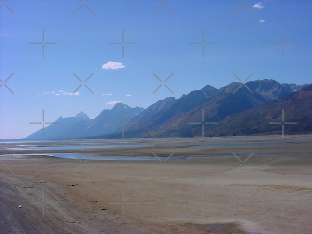 Jackson Lake Dry As A Bone by kevint