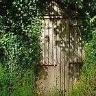 Mystery Door by Alexandra Lavizzari