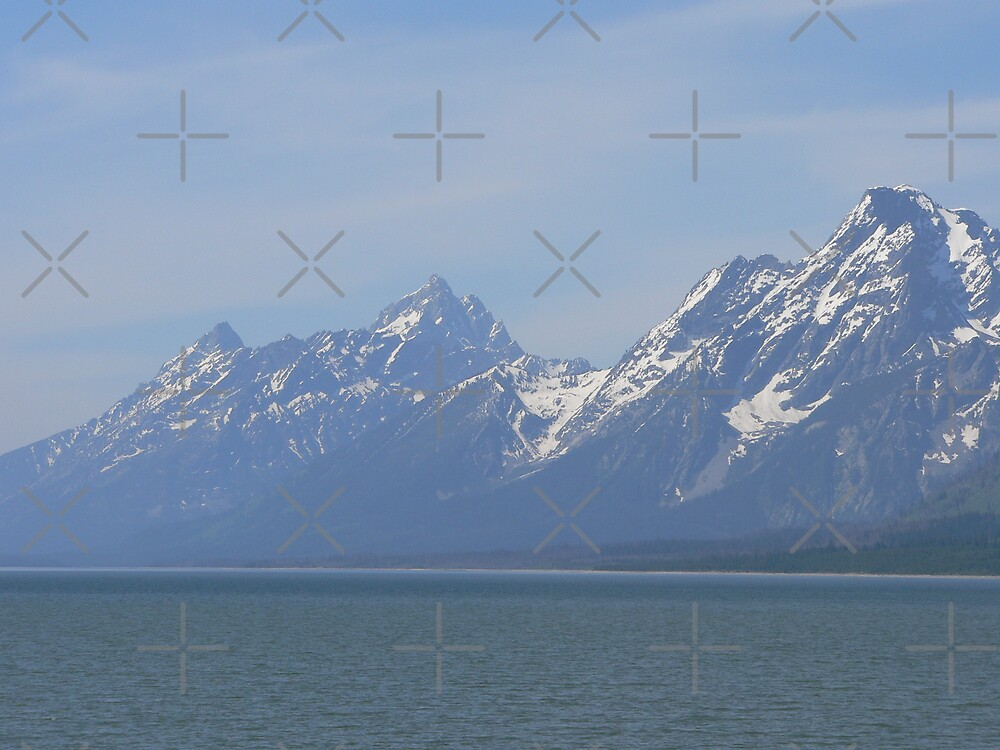 Jackson Lake A Few Years Later. by kevint
