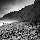 Kahurangi National Park, New Zealand. by VanOostrum