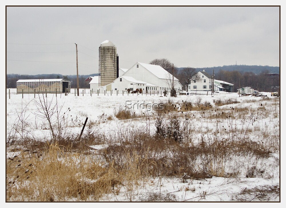 White Farm in Winter by Bridges