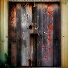 door by alistair mcbride