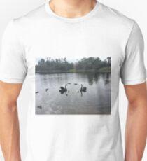Black swans and cygnets T-Shirt