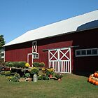 Red Barn at Harvest Time, 1500 views! by Linda Jackson
