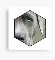 Cute geometric blue eyed dog Canvas Print