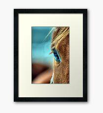 Horse Eye Framed Print