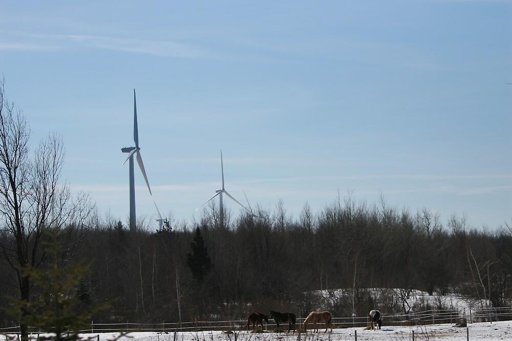 Horses-W.Turbines by fximre