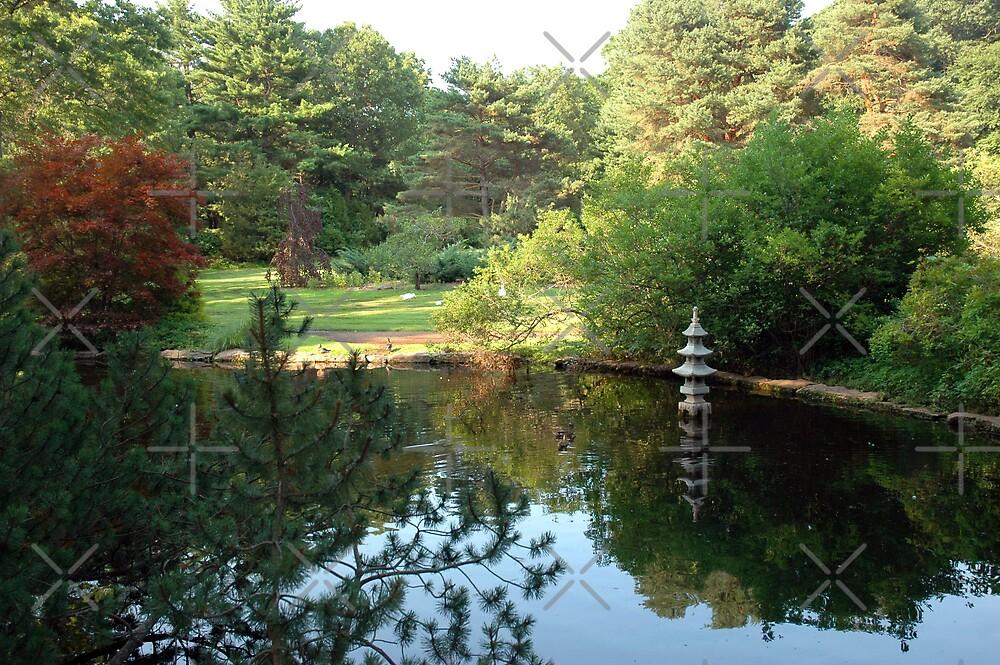 Wickham Park by christiane