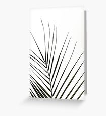 Palm leaf on white background  Greeting Card