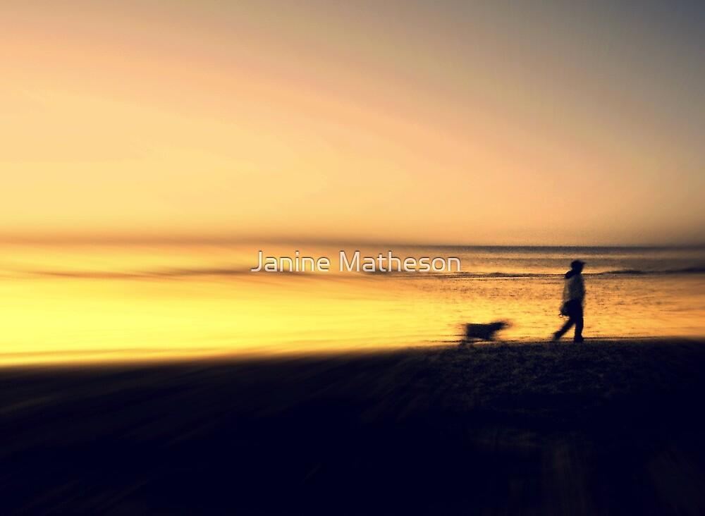 golden evening by Janine Matheson