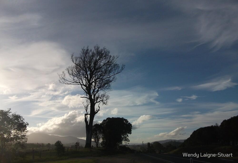 Windswept Australian Cloud by Wendy Laigne-Stuart