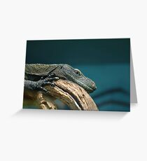 Lizard at Rest Greeting Card