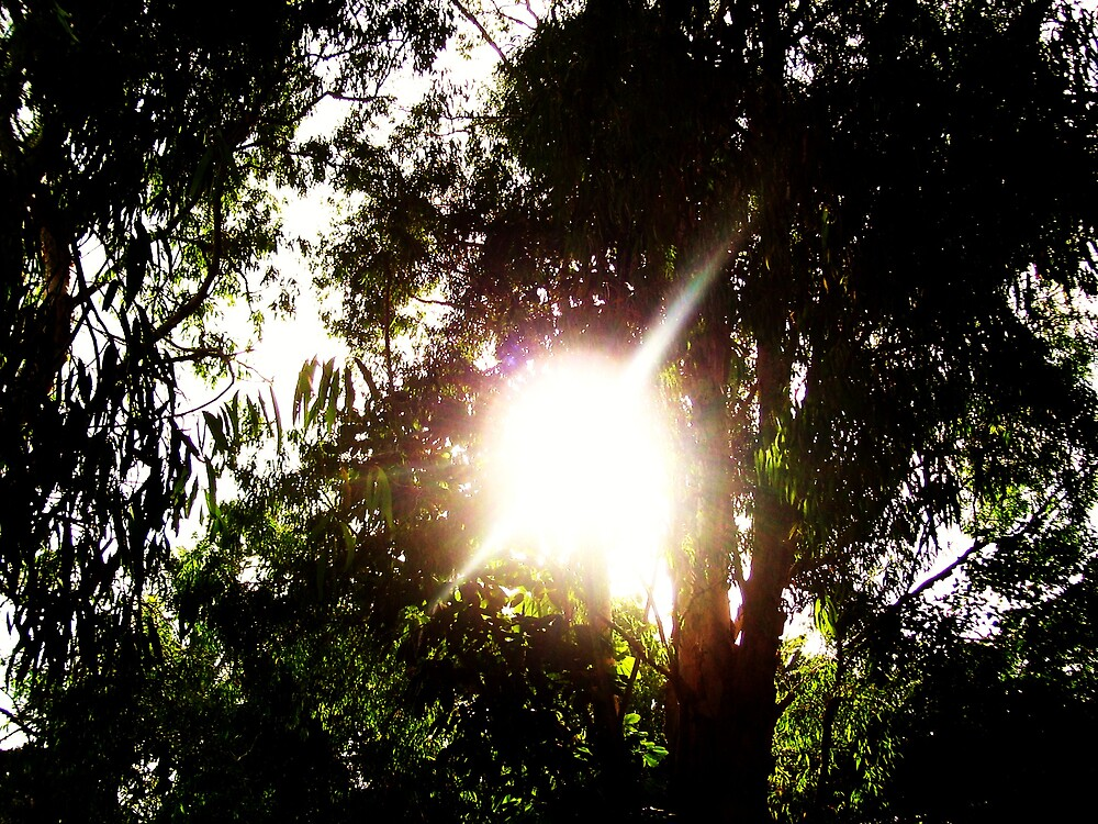 Light from Above... by xXDarkAngelXx