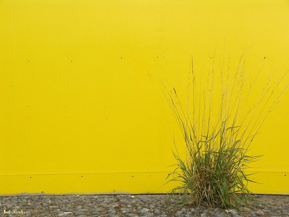 City Potplant by Willem Dickson de Villiers