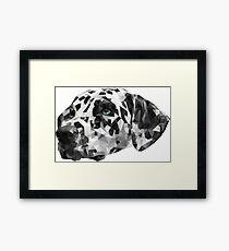 Dalmatian | White Framed Print