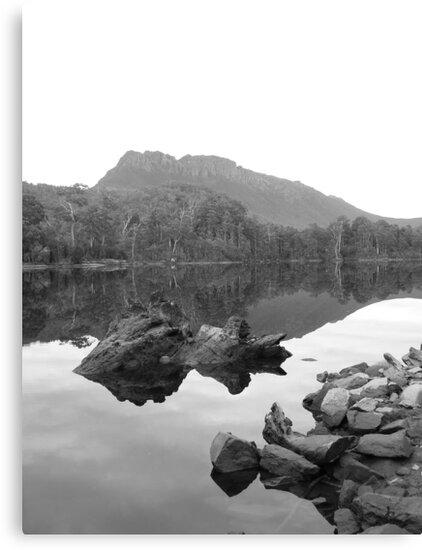 at Lake Rosebery, Tullah by gaylene