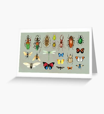 The Usual Suspects - Insects on grey Greeting Card