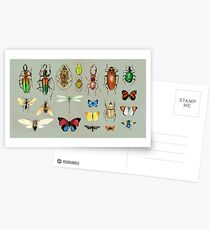 The Usual Suspects - Insects on grey - watercolour bugs pattern by Cecca Designs Postcards