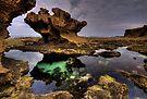 The Rock Pool  by Robert Mullner