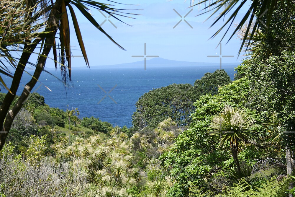 Island View by David Tate