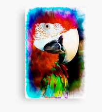 Green wing in colour Canvas Print