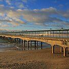 Boscombe Pier by RedHillDigital