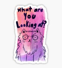 What are You Looking at? Sticker